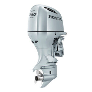 Ricambi Honda BF250